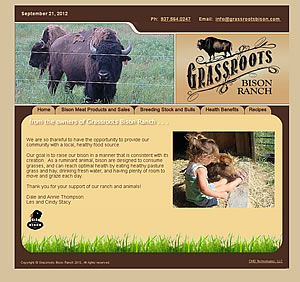 Grassroots Bison Ranch - Troy, OH website design
